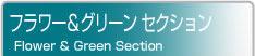 フラワー&グリーン セクション Flower & Green Section